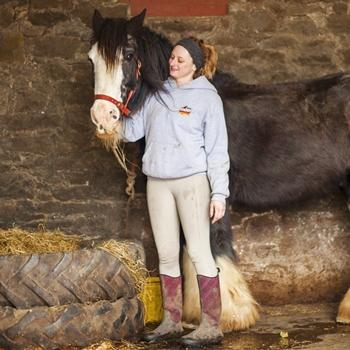 Internship Photo Horse aquare resize 350px